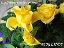 blogcandy di Maria Luisa