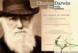 Any Darwin
