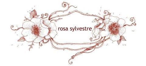 rosa silvestre*