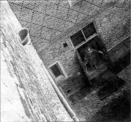 漢普頓宮 鬼影 - 漢普頓宮 拍到鬼影