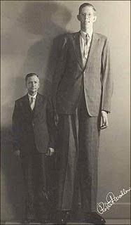 奧爾頓巨人 羅伯特