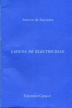<i>Laguna De Electricidad</i> 1998