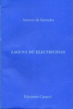 <i>Laguna De Electricidad</i> 1998