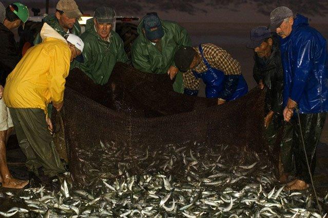 Acabados de Pescar!
