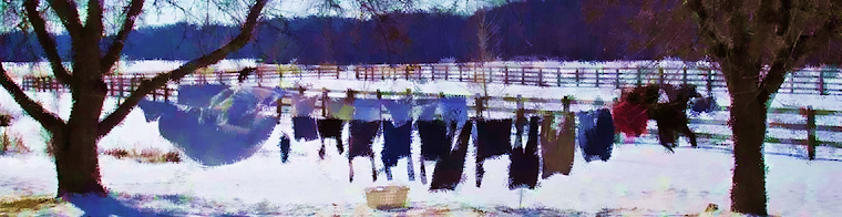Clothesline in Winter