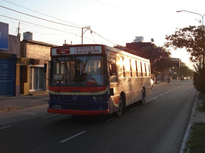TUCMA LINEA 6