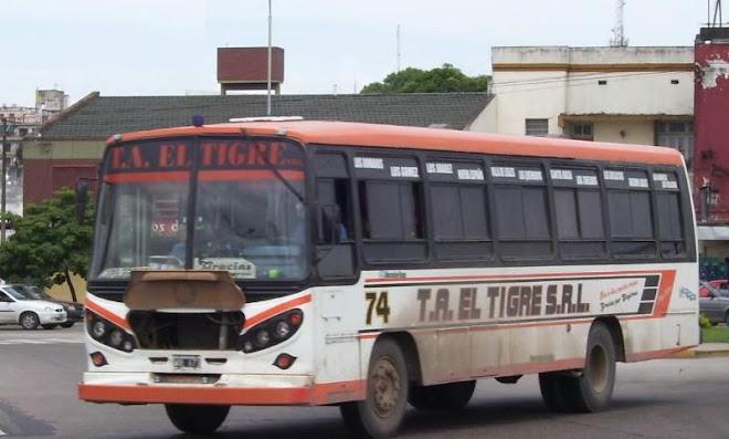 T.A EL TIGRE