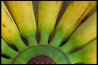 Cómo conservar alimentos en la nevera