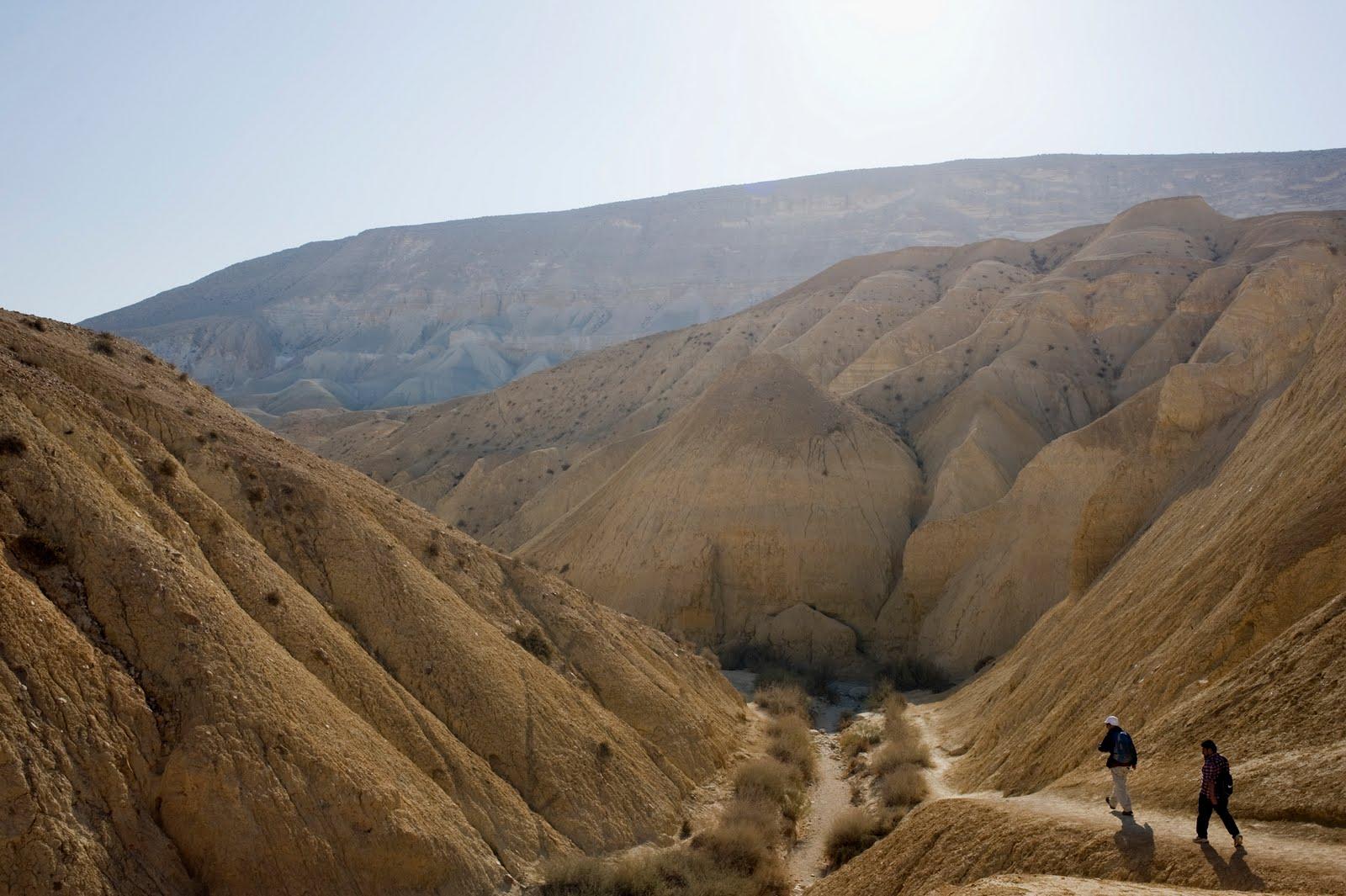 Тайбе, Израиль