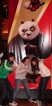Kung fu pandaa
