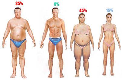 health and body fat