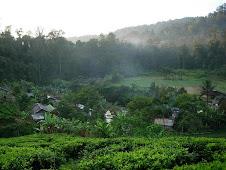 Ecolinks Bogor