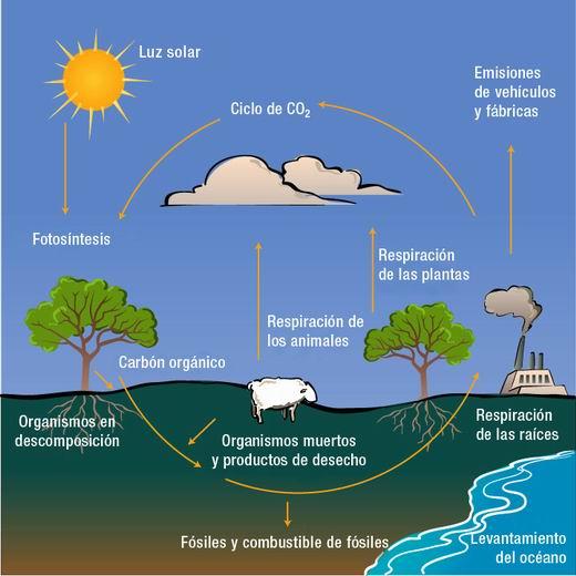 calentamiento global efecto invernadero