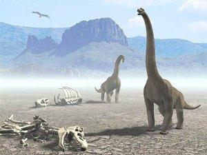 [dinosauri3uu.jpg]