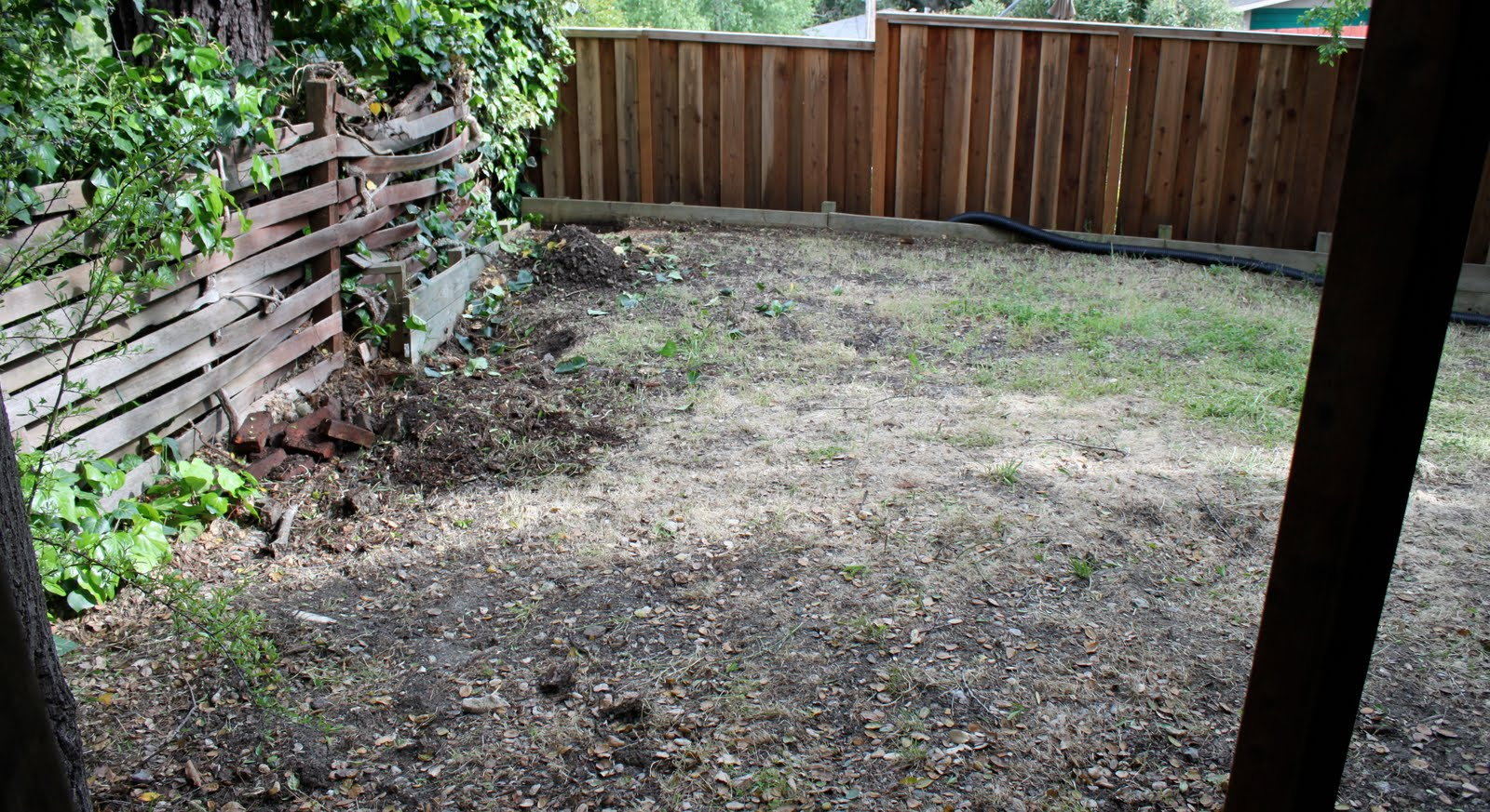 Just another dirt in the wall - The Patch We Are Dealing With Now Is A Sloping Mound Of Dirt Leading From The Deck Posts To The Back Fence Just In Front Of The Fence Is An Oddly Placed