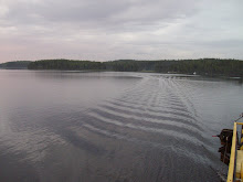 The lake saimaa
