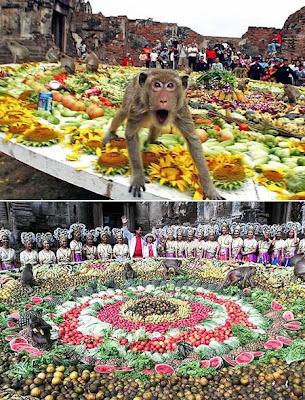 The Monkey Buffet Festival (Thailand) 01