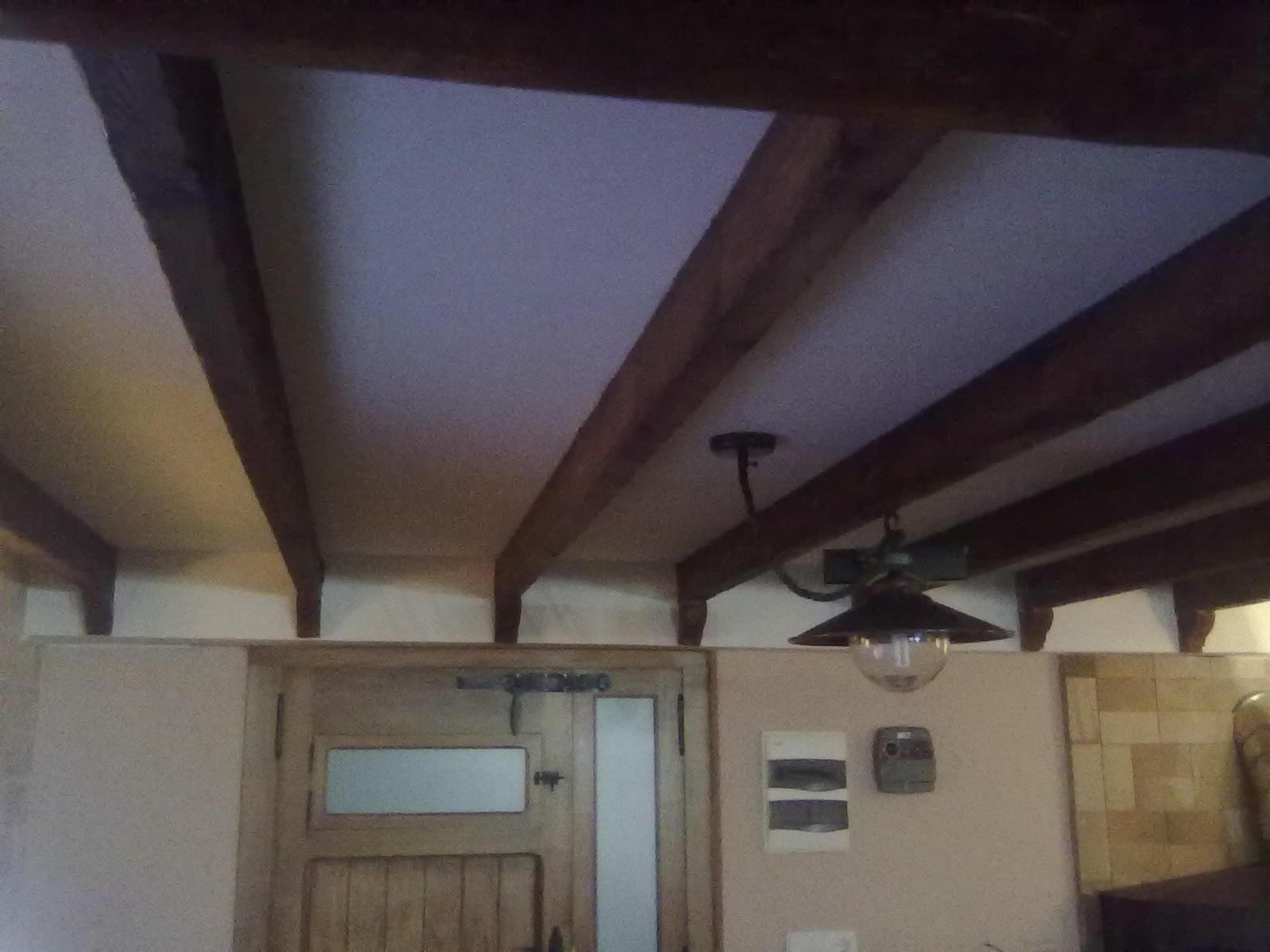 Pladur en alicante elche santa pola torrevieja for Decoracion techos pladur