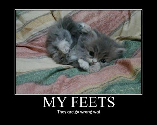 cute cat picture with caption: MY FEETS they are go wrong wai