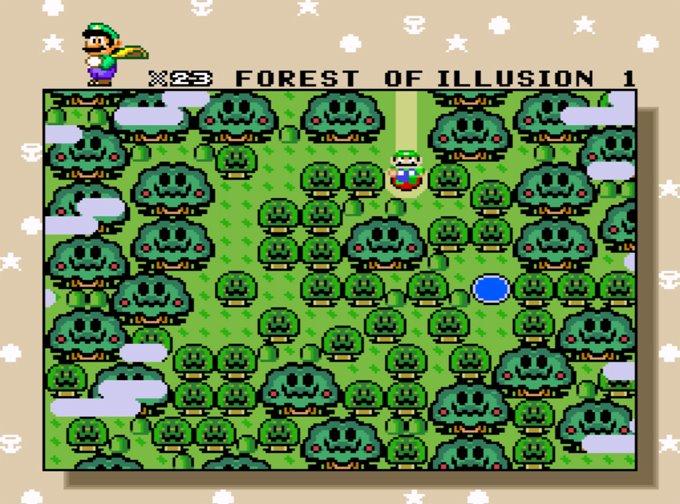 floresta da ilusão
