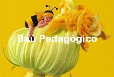 Baú Pedagógico