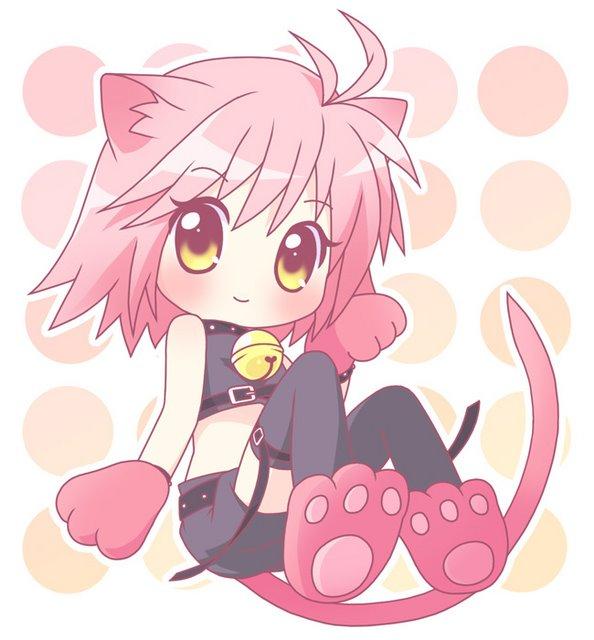 Amulet Cat