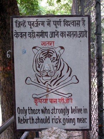 [Tiger.aspx]
