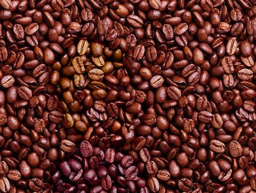 Hidden+face+in+coffee+beans