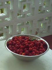 The Barbados Cherries