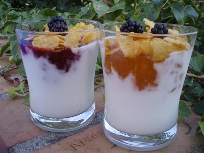 Pasen y degusten yogur natural - Como hacer mousse de yogurt ...