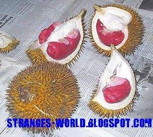 Red Durian @ strange world
