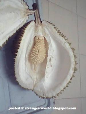 Strange Durian