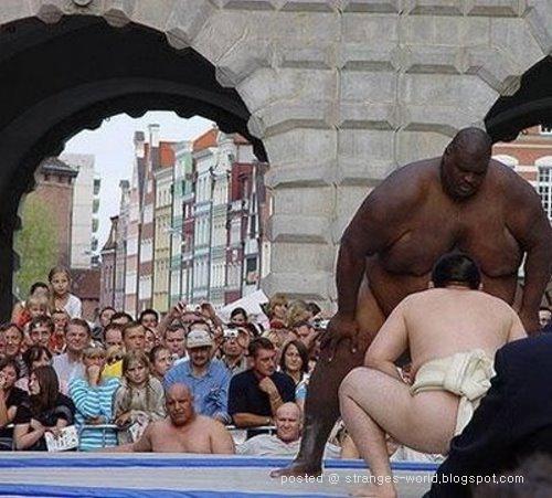 [sumo-wrestler-7.jpg]