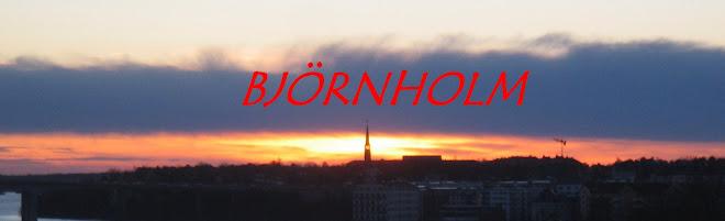 Björnholm