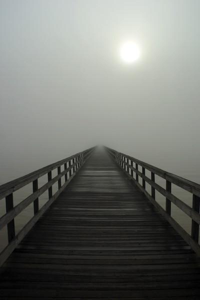 Mole ud i tågen