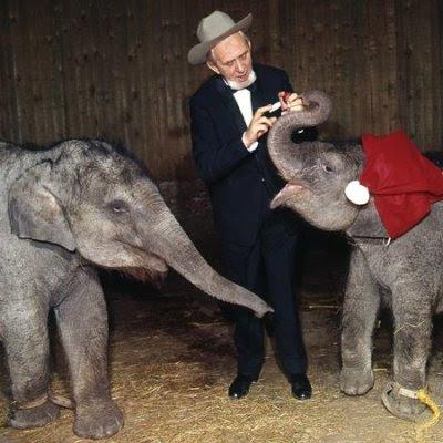 Eli Benneweis med elefanter