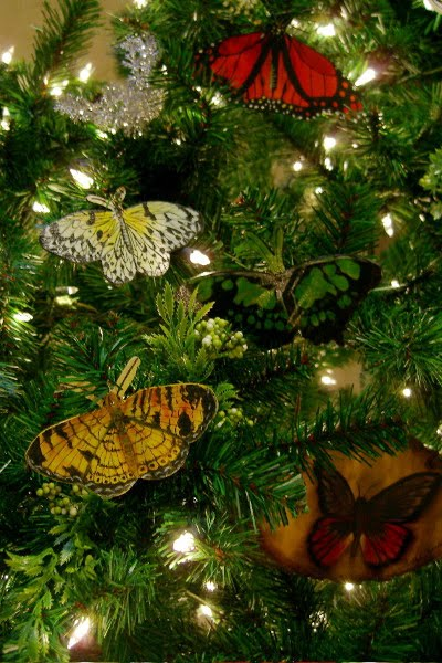Sommerfugle som julepynt på juletræ