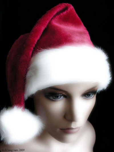 Mannequin Dreaming: Season's Greetings