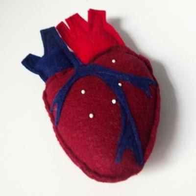 Masochistisk hjerte-nålepude (anatomisk)