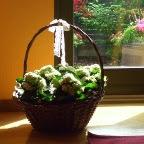 Blomsterkurv hjemme