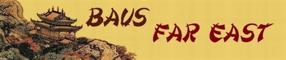 Baus Far East