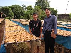 เยี่ยมกลุ่มเกษตรกรผู้ผลิตกล้วยตาก