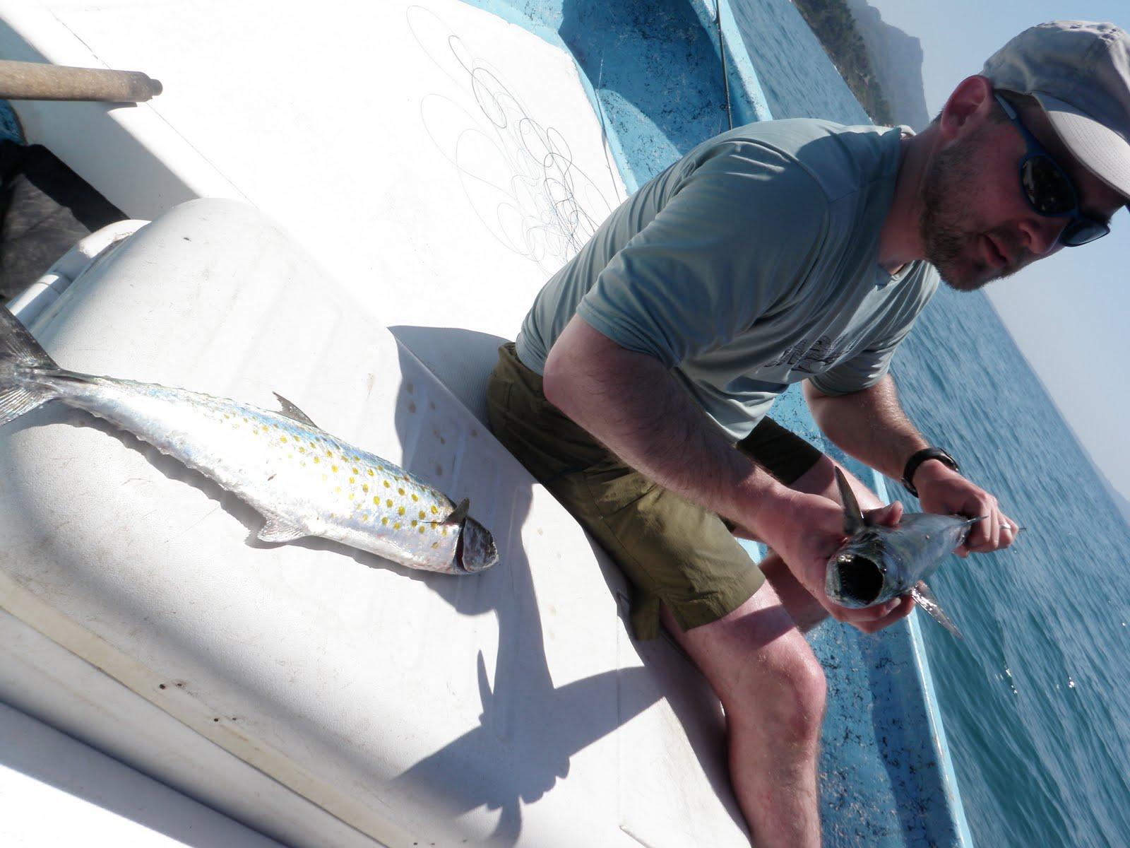Fishing sayulita fly fishing for Fishing rod in spanish