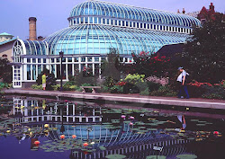 BROOKYLN BOTANICAL GARDEN