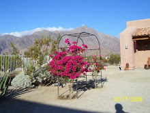 Borrego Springs #4
