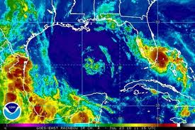 Danielle Dissipated Depression In The Gulf Of Mexico ~ CURRENTBLIPS