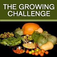 The Growing Challenge