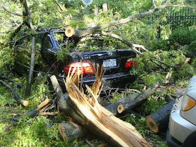 Forest Hills hurricane
