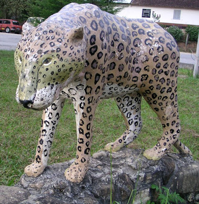 Roadside Jaguar, Brazil