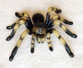 Spider 3D Puzzle (Tarantula)